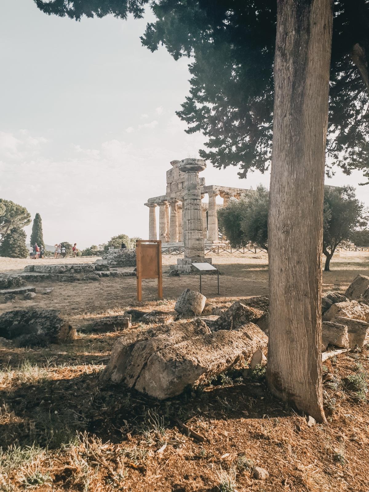 Parco archeologico Paestum, viaggio neltempo