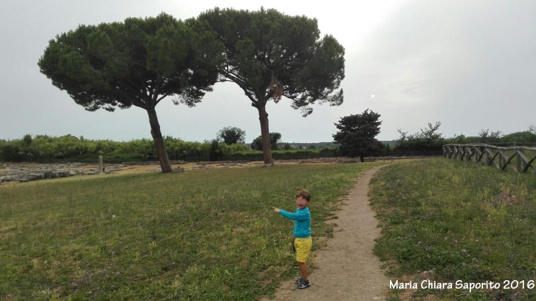 Parco archeologico di Paestum