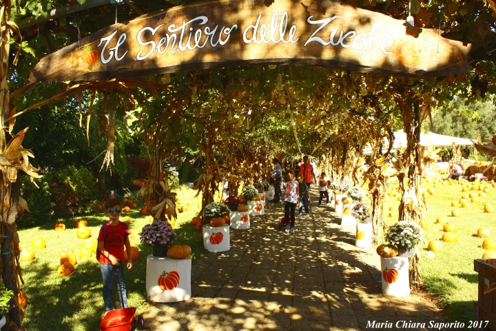 il giardino delle zucche