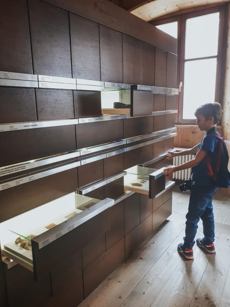 Cosa vedere a Bressanone con i bambini: il Museo della Farmacia, tra cassetti dal contenuto segreto da scoprire, a mummie di animali e tanto altro.